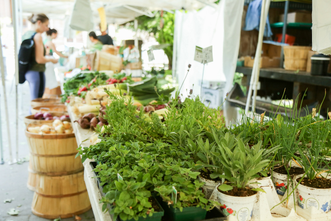 How to Shop at Farmers Markets